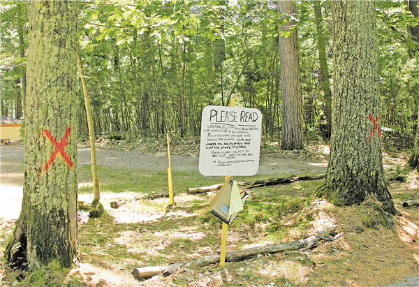 Some property owners along Van Bussum Road in Three Lakes are against proposed tree cutting for roadwork and have posted signs and a petition between two large pine trees marked for cutting starting July 27. —STAFF PHOTOS